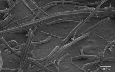 研究開発品:繊維状PTFE